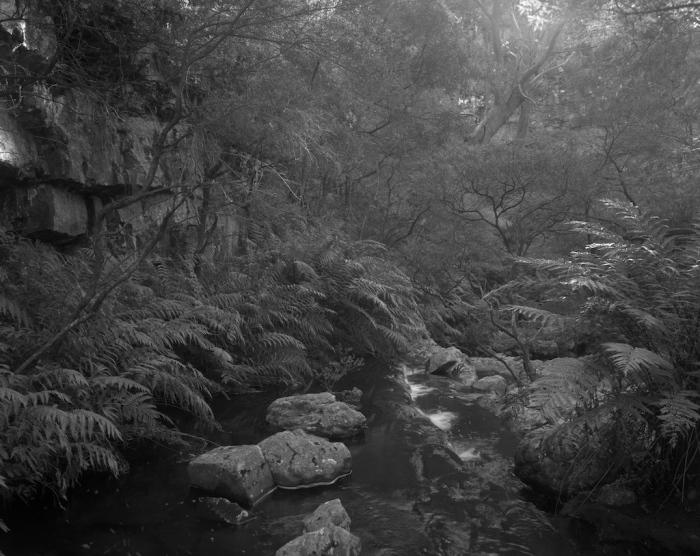 Kanangra Brook