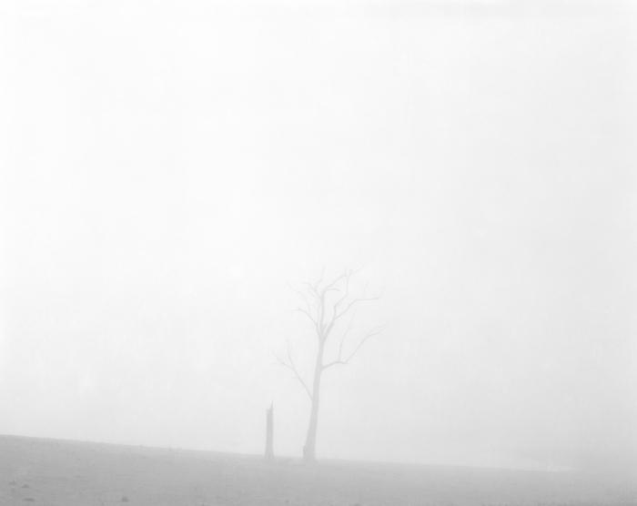 Morning fog at Orchard Hills