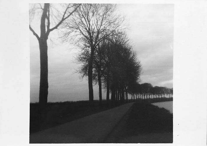 This image was taken with an original Brownie Camera. The camera uses 117 film which is the same size as 120 making respooling easy.  Fortunately, this camera came with 2 spools and that's what I call luck!!