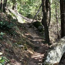 Mayne Path