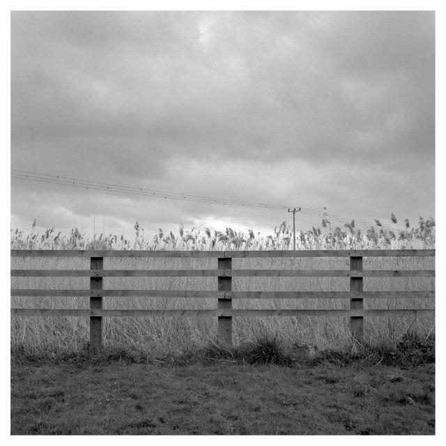 Cossington Meadows (4 of 7)