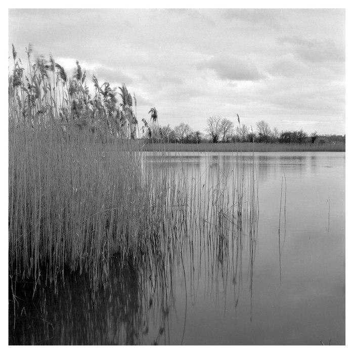 Cossington Meadows (5 of 7)