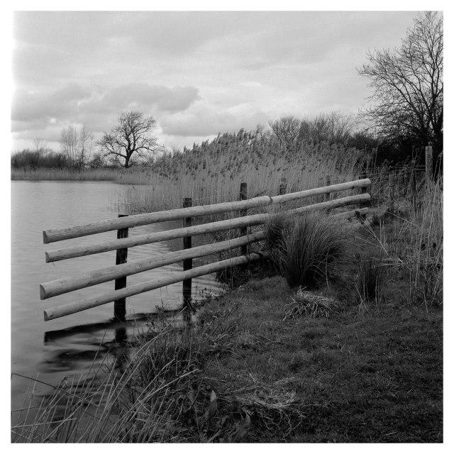Cossington Meadows (6 of 7)