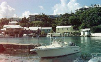 Bermuda001
