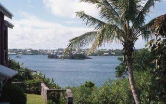 Bermuda018