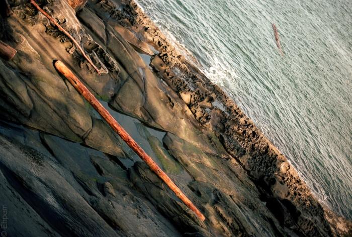 Sanded log, ground on the sandstone