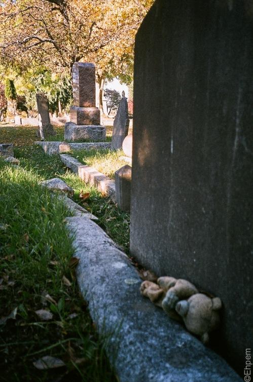 Olympus XA2, Agfa Vista 200, Victoria, Ross Bay Cemetery