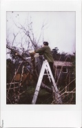 Instax: removing the apple