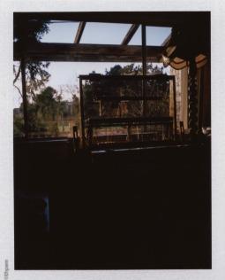 Land 100: loom in window
