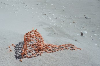 Netting (1 of 1)