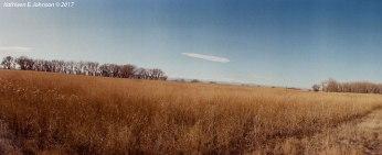 Horizon_Prairie