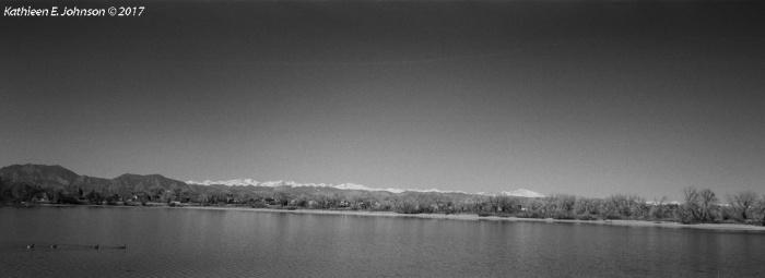 LakeWanekaGeese
