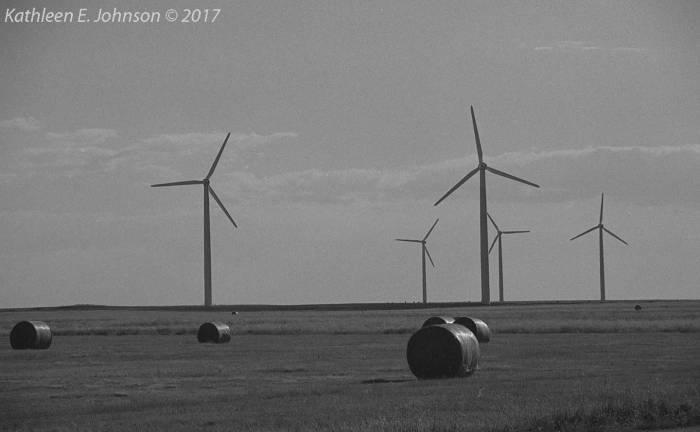 Prairie_Sentinels014