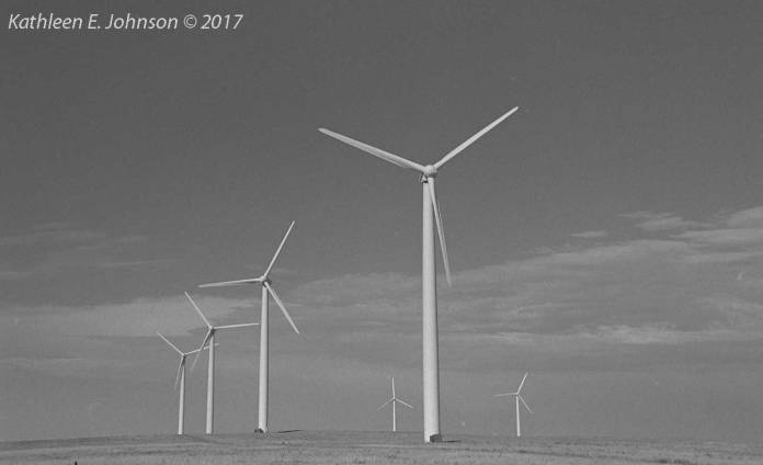 Wind3_Prairie_Sentinels