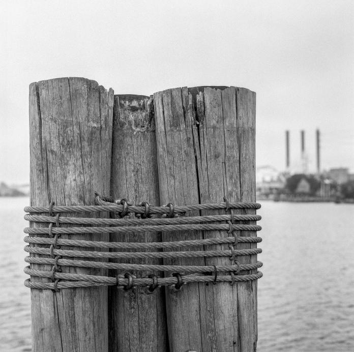 Lomography Earl Grey 100 / f5.6 / 1/60sec